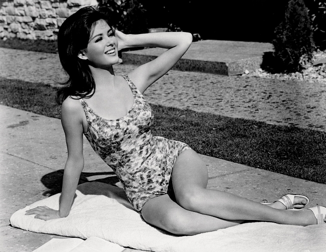 1942 pamela tiffin swimsuit copy