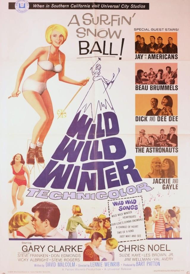 Vintage 1966 Wild Wild Winter Gary Clarke Musical Ski Bunny 1sh Movie Poster