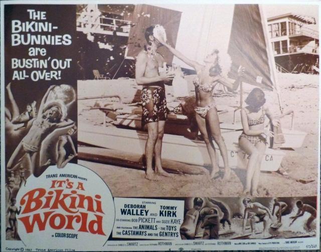 It S A Bikini World 32