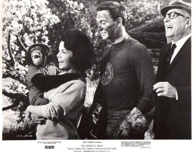 Annette Funicello Tommy Kirk Chimp Original 8x10 glossy Photo #E6014