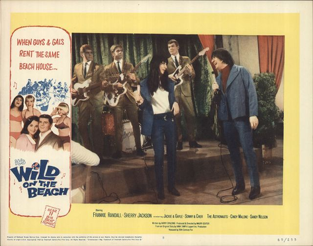 Wild on the Beach 1965 Original Movie Poster Comedy