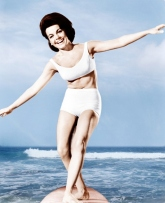 Annette Funicello surfboard