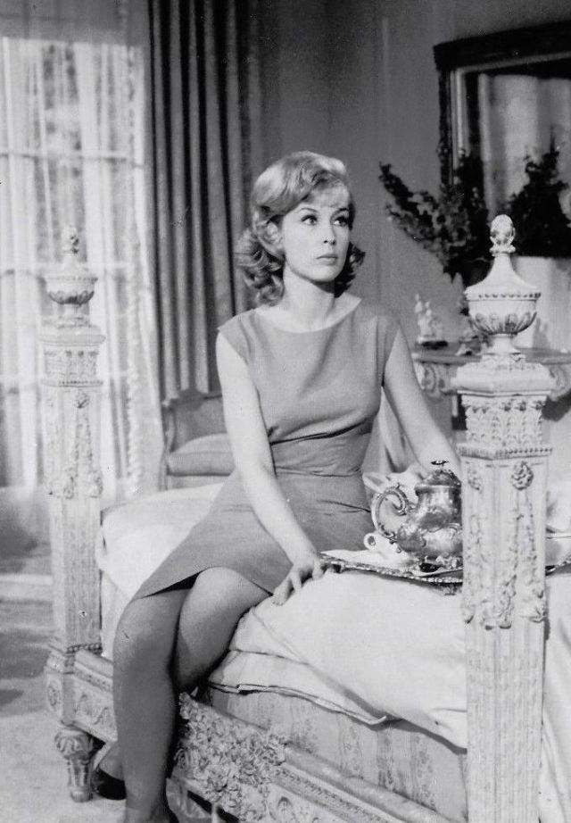 BARBARA EDEN Photo 4 x 6 inch. (10 x 15 cm) glossy for Archive