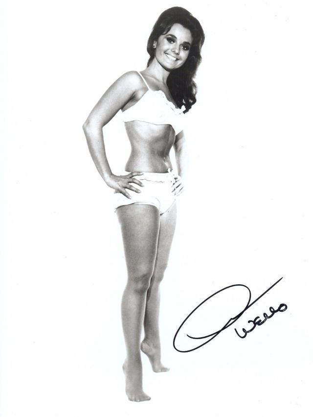 Dawn Wells (Vintage) Gilligan's Island EXTREMELY RARE SEXY SIGNED RP 8x10 WOW!!