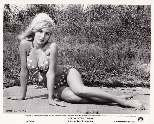 LEE MEREDITH Bikini Swimsuit Original Vintage HELLO DOWN THERE Cheesecake Photo