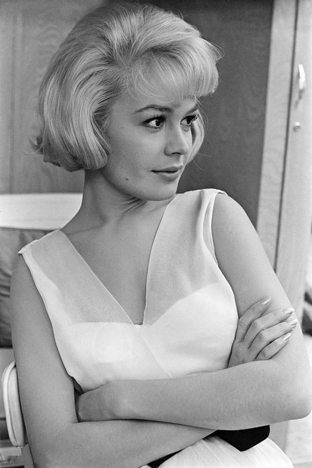 SANDRA DEE Photo Poster 8 x 12 inch. (20 x 30 cm) glossy, for Archive