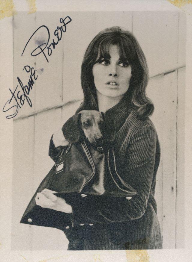 """Stefanie (Stephanie) Powers signed by hand 3 3:4"""" x 5"""" B:W photograph"""