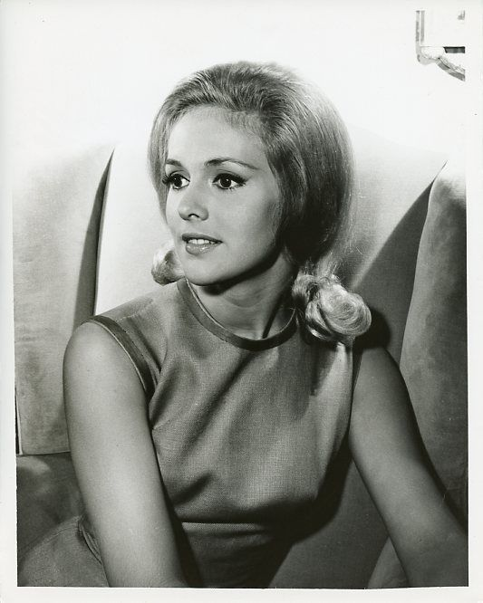 linda-marshall-pretty-busty-smiling-portrait-tammy-original-1965-nbc-tv-photo