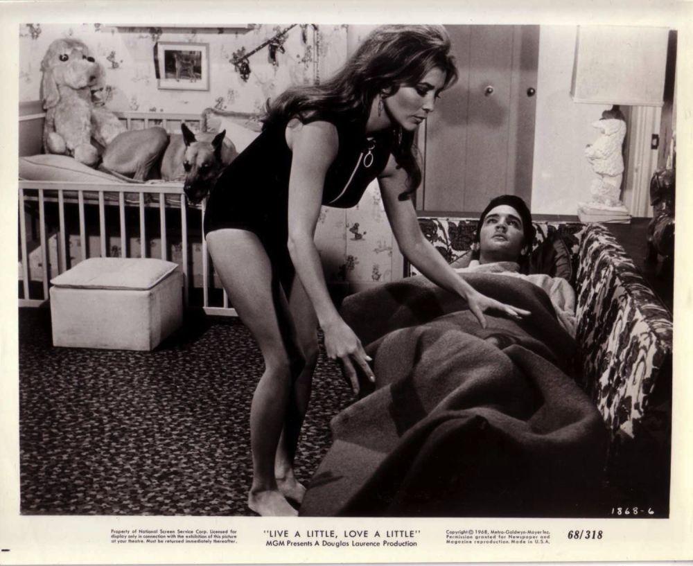 michele-carey-vintage-1968-photo-live-a-little-love-leggy-brunette