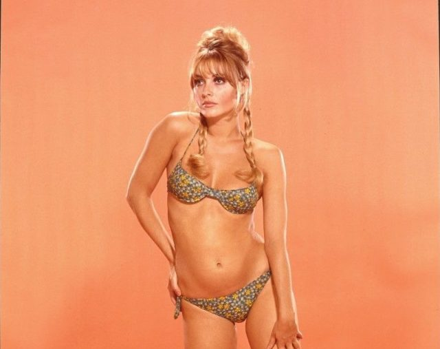 sharon-tate-dont-make-waves-67-sexy-bikini-5x7-color-transparency-virgil-apger