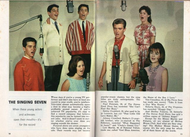 1963 TV ARTICLE~PAUL PETERSEN~JOHNNY CRAWFORD~SHELLEY FABARES~LORI MARTIN
